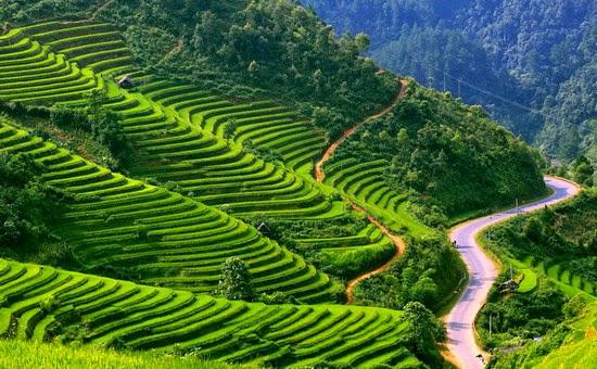 HOÀNG SU PHÌ – NƠI HỒN ĐẤT VÀ HỒN NGƯỜI HÒA QUYỆN – Việt Nam Phượt